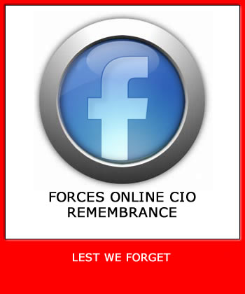 Forces Online CIO Remembrance