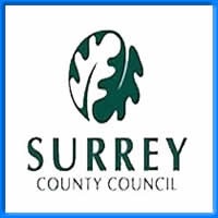 Surrey County Council Blue