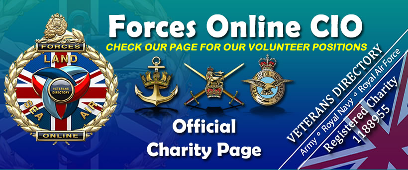 Official Forces Online CIO Facebook Page